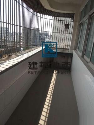 揭东县 揭东城西试验区宿舍                                地图图片