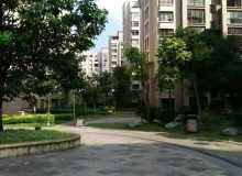思茅区,城南,公园一号,3室2厅,120㎡