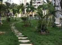 青秀区,仙葫经济开发区,绿城明珠怡景苑,4室2厅,142.02㎡