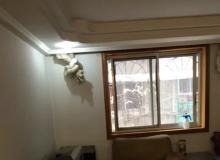 青羊区,苏坡,青羊教师公寓,3室2厅,86.65㎡