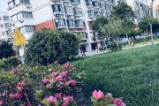 上海小新窝