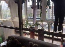 东山开发区,港窑路,碧水林茵,2室2厅,101.5㎡