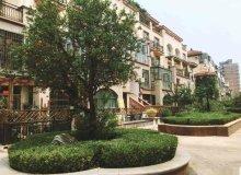 兰山区,城南,滨河国际,6室3厅,330㎡