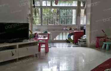 中新街芳华园 华侨城成熟老社区 精装3房 想租的赶紧来