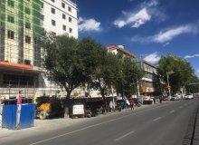 城关区,城关,西藏旅游大厦,-室-厅,65㎡