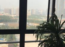 高新区,锦业路,汇鑫IBC,-室-厅,605㎡