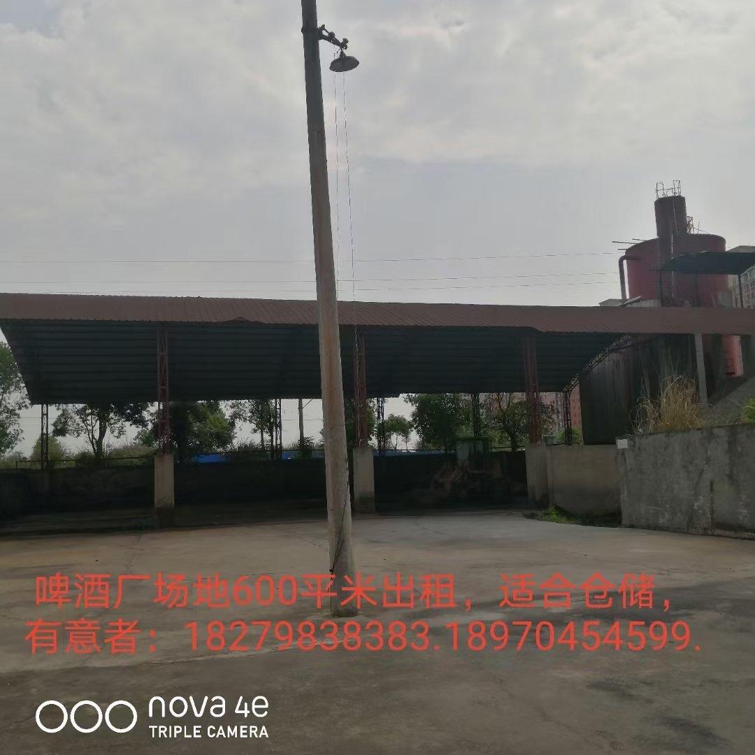 遂川城东大型厂房,仓库,修理厂对外招租。